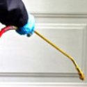 24/7 Pest Control Services - Call Anytime! - PayPerCall