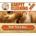Carpet and Tile Cleaning - PPCALL