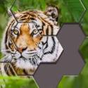 Hexa Jigsaw Puzzle - iOS